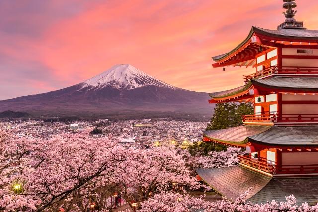 esperance de vie japon